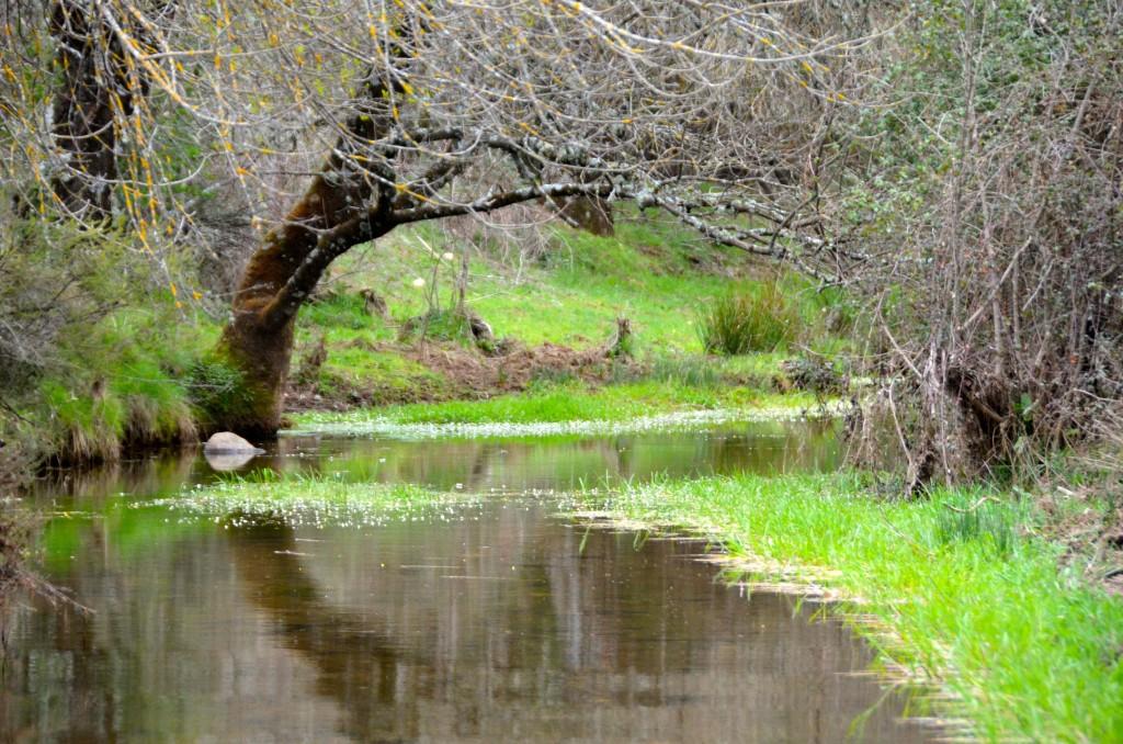 Paisaje de Valle Feitoso, Monfortinho, Portugal. Copyright Hernando Reyes